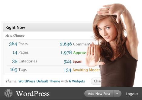 Prestataire Solutions WordPress