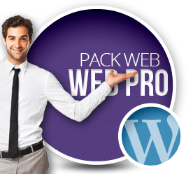 Prestataire WordPress Paris Pack Starter Pro