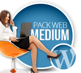 Prestataire WordPress Paris Pack Medium