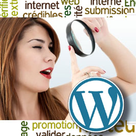 Analyser SEO site Wordpress
