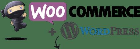 WooCommerce-WordPress_boutiques-en-ligne