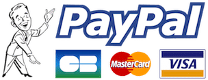 Wordpress-boutique-paypal